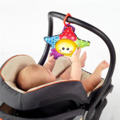 "Baby Einstein - Salteluta De Activitati ""Omida Si Prietenii"""