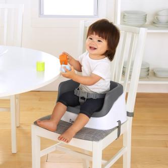 Ingenuity – Booster Toddler Slate