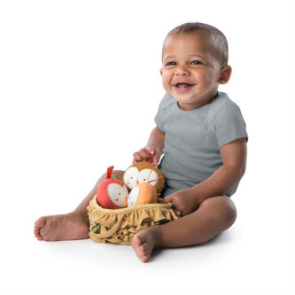 Bright Starts - Set 3 jucarioare de plus Baby Bird Put & Take
