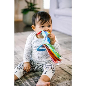 Baby Einstein - Jucarie pentru dentitie in forma de carte